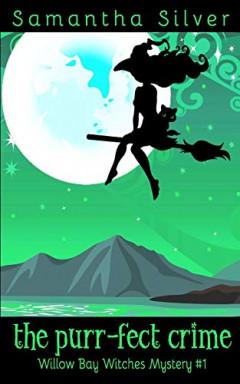 Band 1 von 8 der Willow Bay Witches Reihe von Samantha Silver.